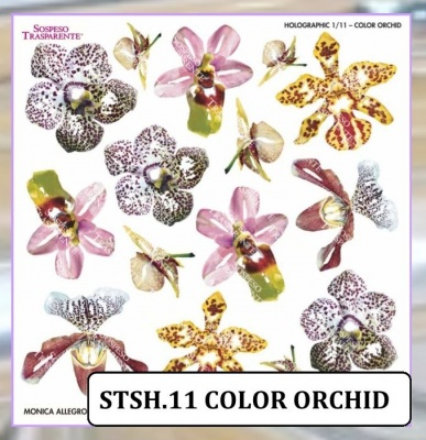 HOLOGRAPHIC SHEET COLOR ORCHID