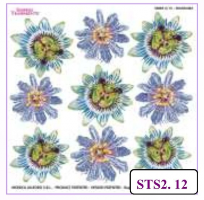 PASSIFLORA PRINTED SHEET